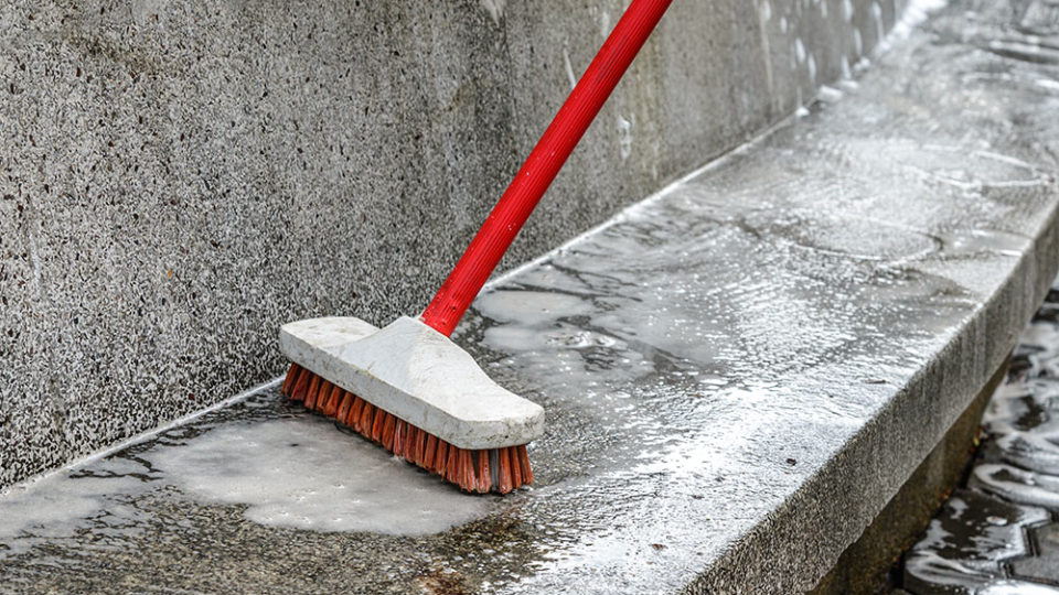 Cleaning mould from concrete or tiles